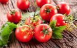 Выращиваем томаты без полива рассада в пеленках от галины кизимы